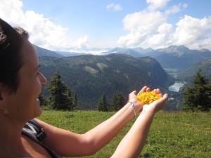 Margareta Ahrer beim Kräutersammeln in den französichen Alpen