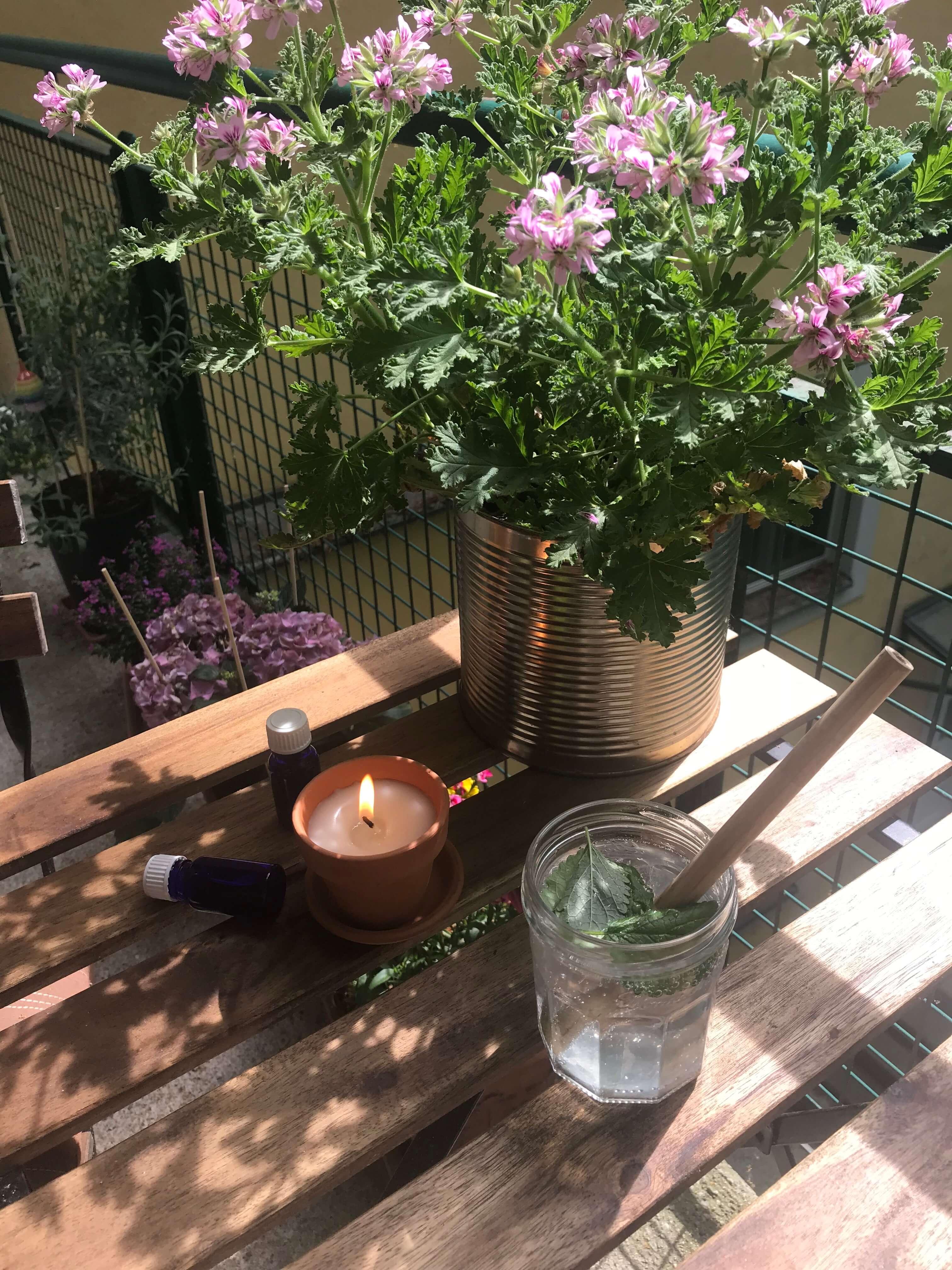 Citronella Kerzen selbermachen gegen Mücken