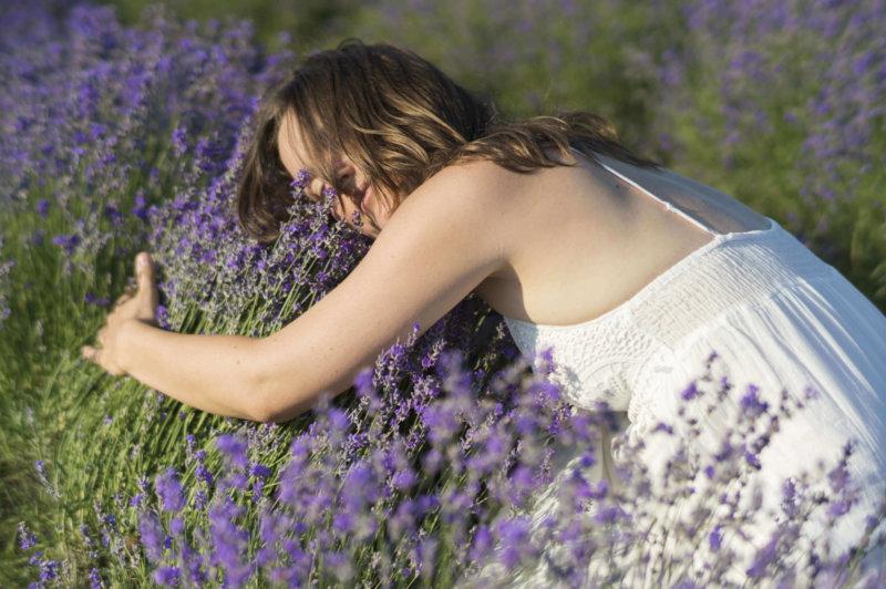 Lavendelöl für Aromatherapie Anfänger