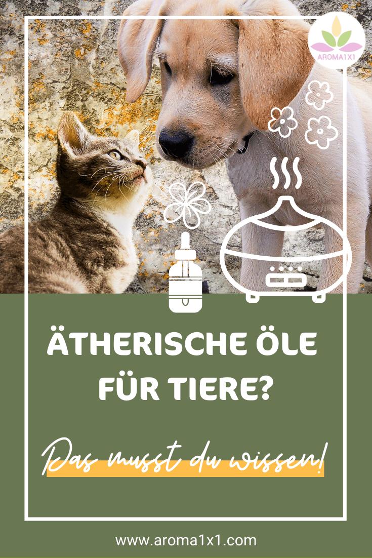 ätherische Öle für Tiere anwenden