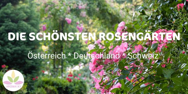 die schönsten Rosengärten